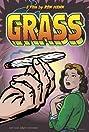 Grass (1999) Poster