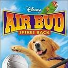 Air Bud: Spikes Back (2003)