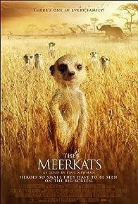 Primary photo for Meerkats: The Movie