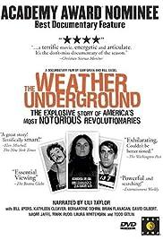 weather underground settings