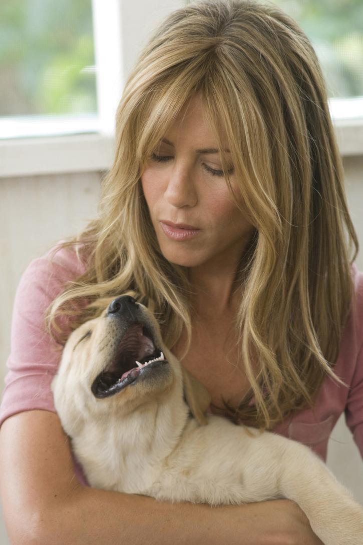Jennifer Aniston in Marley & Me (2008)