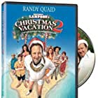 Ed Asner, Randy Quaid, Dana Barron, Miriam Flynn, Lee Sung Hi, and Jake Thomas in Christmas Vacation 2: Cousin Eddie's Island Adventure (2003)