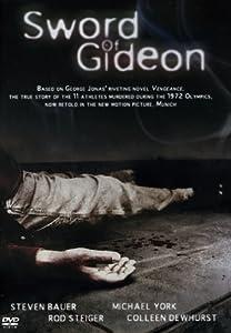 Movie sites download Sword of Gideon [flv]