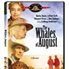 Bette Davis, Lillian Gish, Vincent Price, and Ann Sothern in The Whales of August (1987)