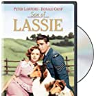 June Lockhart, Peter Lawford, and Pal in Son of Lassie (1945)