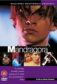Primary photo for Mandragora