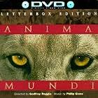 Anima Mundi (1991)