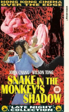snake in the monkeys shadow final fight