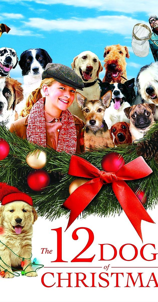 Dog Names Born On Christmas Eve