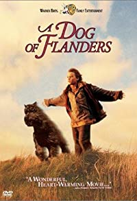 Primary photo for A Dog of Flanders