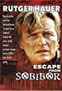 Escape from Sobibor (1987) Poster