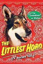 The Littlest Hobo
