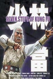 Qi bu mi zong Poster