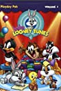 Baby Looney Tunes (2002) Poster