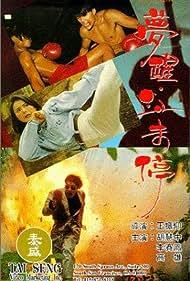 Meng xing xue wei ting (1991)