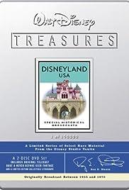 Disneyland After Dark Poster
