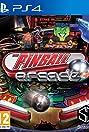 The Pinball Arcade (2012) Poster