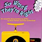 So Wrong They're Right (1995)