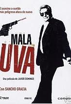 Primary image for Mala uva