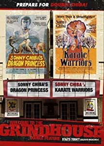 the Karate Warriors hindi dubbed free download
