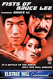 Fists of Bruce Lee Poster