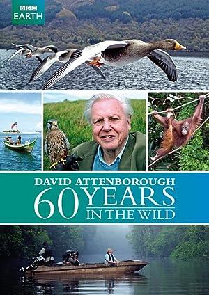 Where to stream Attenborough: 60 Years in the Wild