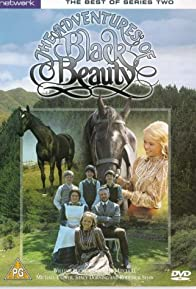 Primary photo for The Adventures of Black Beauty