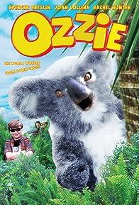 Primary photo for Ozzie