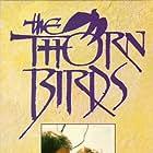 Richard Chamberlain, Christopher Plummer, Rachel Ward, and Mare Winningham in The Thorn Birds (1983)