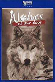 Wolves At The Door Stream