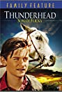 Thunderhead - Son of Flicka (1945) Poster
