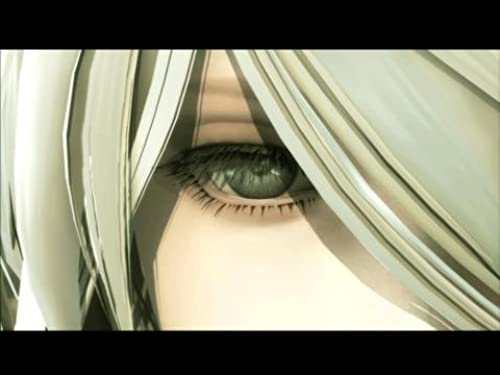 NieR New Project (VG)