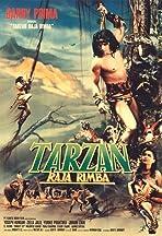 Tarzan raja rimba