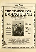 The Search for Evangeline