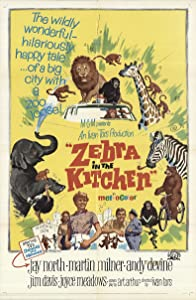 Watch a free movie now online Zebra in the Kitchen by Andrew Marton [UltraHD]