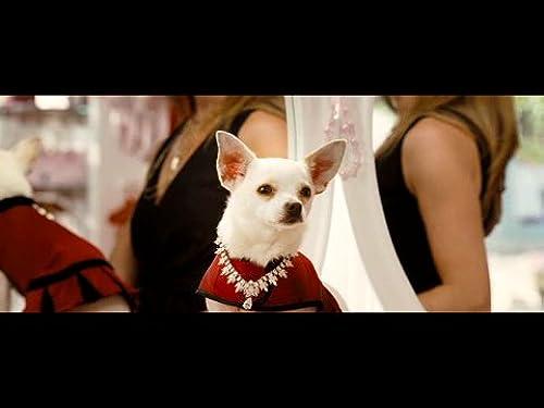 Beverly Hills Chihuahua: Trailer #2