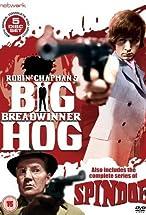 Primary image for Big Breadwinner Hog