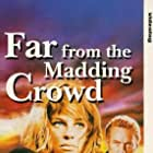 Terence Stamp, Alan Bates, Julie Christie, and Peter Finch in Far from the Madding Crowd (1967)