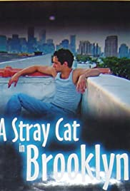 A Stray Cat in Brooklyn Poster