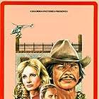 Charles Bronson, Robert Duvall, and Jill Ireland in Breakout (1975)