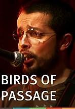 Aves de paso