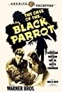 The Case of the Black Parrot (1941) Poster
