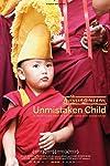 Unmistaken Child (2008)