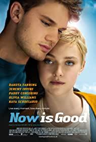 Dakota Fanning and Jeremy Irvine in Now Is Good (2012)