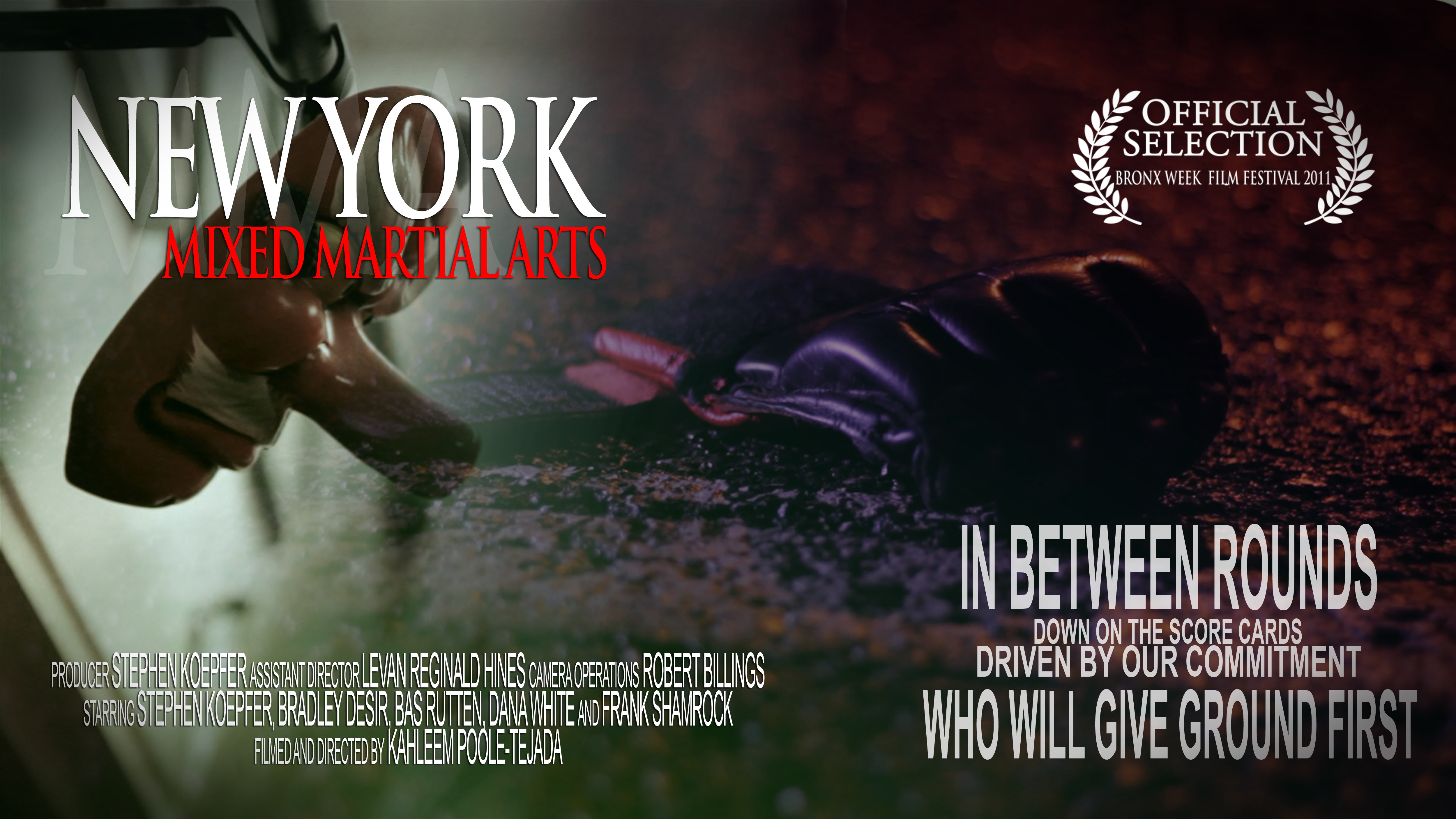 New York Mixed Martial Arts (2011)
