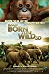 Exclusive: Born to Be Wild 3D Cast Interviews
