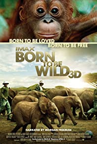 Primary photo for Born to Be Wild