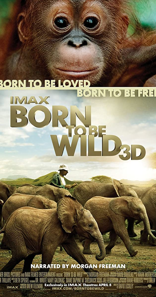 Subtitle of Born to Be Wild