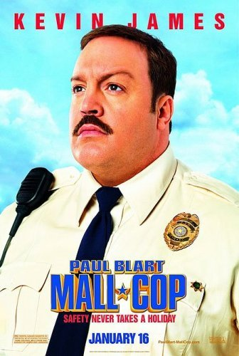 Paul Blart Mall Cop 2009 Hindi Dual Audio 350MB BluRay ESubs Download
