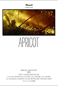 Primary photo for Apricot